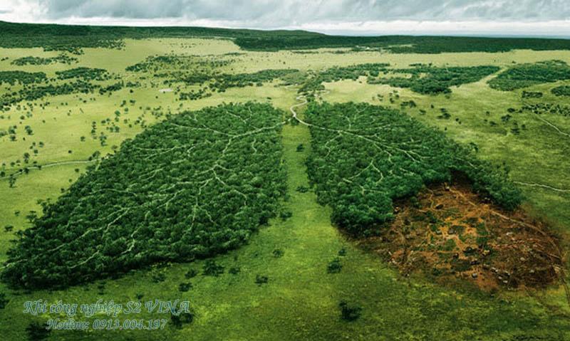 Gia tăng nồng độ CO2 tác dụng phụ làm trái đất xanh hơn